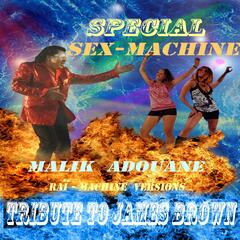 Special Sex-Machine: Tribute to James Brown