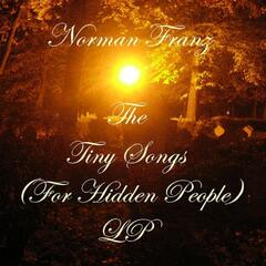 The Tiny Songs (For Hidden People) LP