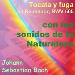 Bach: Tocata y Fuga in D Minor, BWV 565