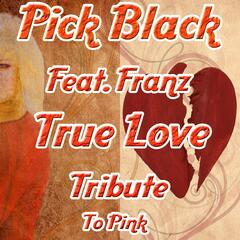 True Love Tribute to Pink