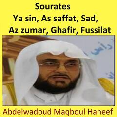 Sourates Ya Sin, As Saffat, Sad, Az Zumar, Ghafir, Fussilat