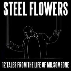 12 Tales From The Life Of Mr. Someone
