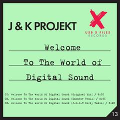Welcome to the World of Digital Sound