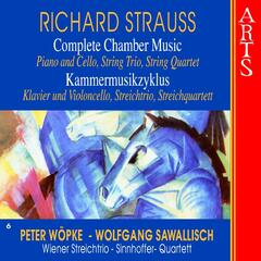 Strauss: Complete Chamber Music, Vol. 6