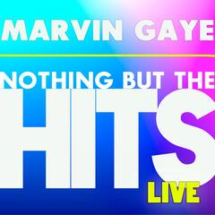 Marvin Gaye's Nothing But the Hits
