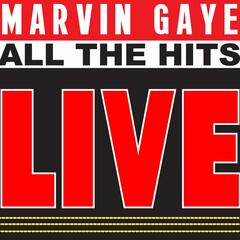 Marvin Gaye Sings All the Hits