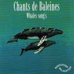 Whales Songs