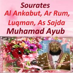 Sourates Al Ankabut, Ar Rum, Luqman, As Sajda