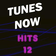 Tunes Now: Hits, Vol. 12