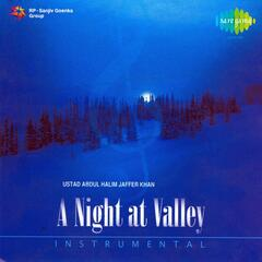 A Night At the Valley