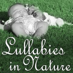 Lullabies in Nature: Sleeping in the Magic Forest