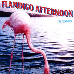 Flamingo Afternoon