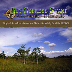 Big Cypress Swamp: The Western Everglades Original Soundtrack Music and Nature Sounds by SAMMY TEDDER