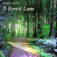 A Forest Lane