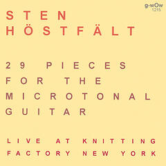 29 Pieces For The Microtonal Guitar Live At Knitting Factory New York