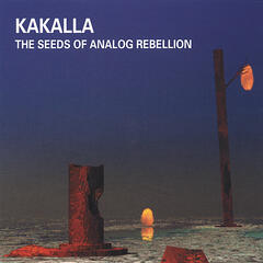 The Seeds of Analog Rebellion