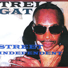 Street Independent Cd Downloadable Music
