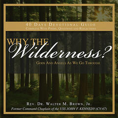 Why The Wilderness? 40 Day Audio Devotional Guide (Poems, Questions, Reflections)