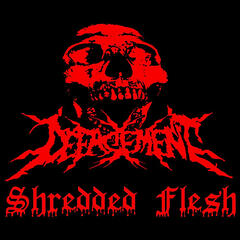 Shredded Flesh