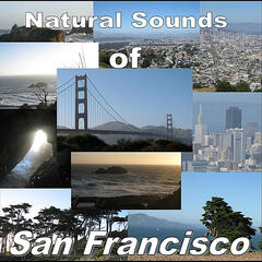 Sounds of San Francisco