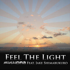 Feel the Light (feat. Jake Shimabukuro)