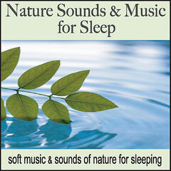 Nature Sounds & Music for Sleep: Soft Music & Sounds of Nature for Sleeping, Sleep Music with Ocean Waves and Forest Sounds
