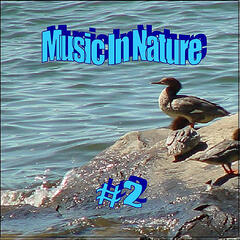 Music in Nature - 2