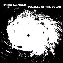Puzzles of the Ocean