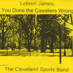 Lebron James, You Done the Cavaliers Wrong - Single