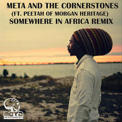 Somewhere in Africa (Remix) (feat. Peetah)