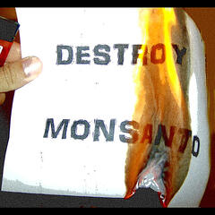 Destroy Monsanto