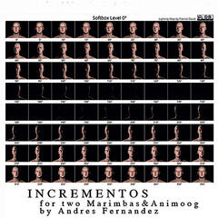 Incrementos for Two Marimbas & Animoog: I.