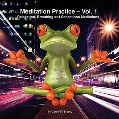 Meditation Practice, Vol. 1: Relaxation, Breathing and Sensations Meditations