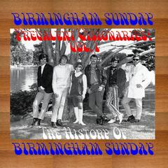 Prevalent Visionaries: The History of Birmingham Sunday, Vol. 1