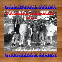 Prevalent Visionaries: the History of Birmingham Sunday - Vol. 2