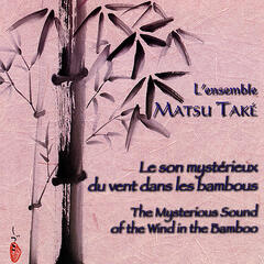 The Mysterious Sound of the Wind in the Bamboo