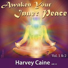 Awaken Your Inner Peace, Vol. 1 & 2 (Eleven Chakra Healing System)