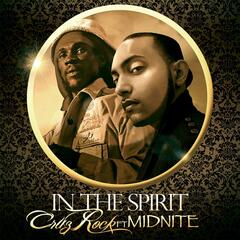 In the Spirit (feat. Midnite)