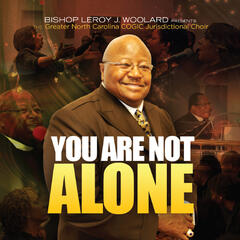 You Are Not Alone (Bishop LeRoy J. Woolard Presents)