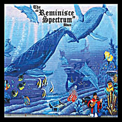 The Reminisce Spectrum Album
