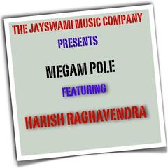 Megam Pole (Extended Internet Single Edit) [feat. Harish Raghavendra]