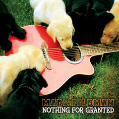 Nothing For Granted (feat. Dave Gaudet)