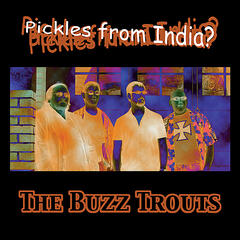 Pickles From India?