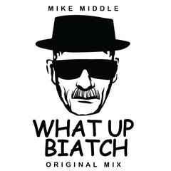 What Up Biatch! - Single