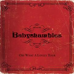 Oh What A Lovely Tour - Babyshambles Live