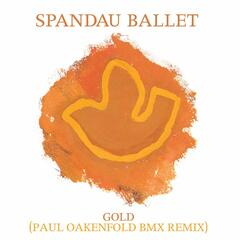Gold [Paul Oakenfold BMX Remix] (Paul Oakenfold BMX Remix)