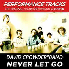 Never Let Go (Performance Tracks) - EP