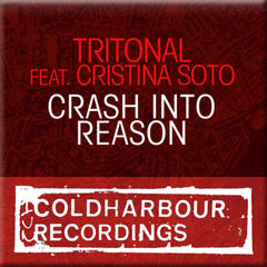 Crash Into Reason