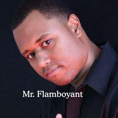 Mr. Flamboyant