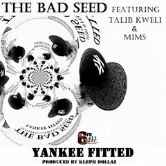 Yankee Fitted - Single